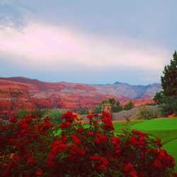 Southern Utah Rentals banner image