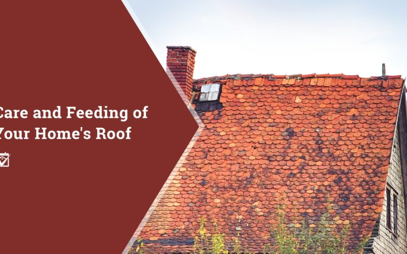 5 Steps for Care of Your Home's Roof